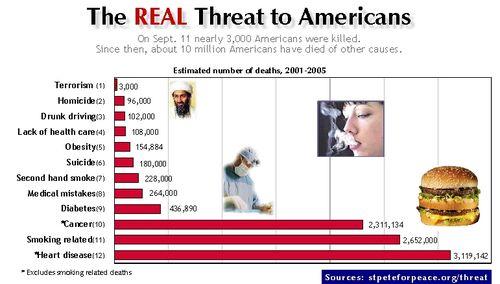 What.kills.americans.july07website2